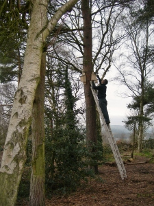 Andy, (and Darren) installing the new bird and bat boxes.  We will do surveys later in the year to see what they attract.