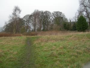 One of the potential  Early Medieval lynchets on Crooked Lands