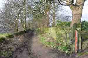 Kelcliffe Lane