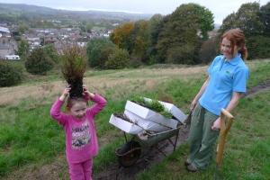 Heather planting on Jubilee Walk