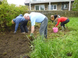 Friends preparing the wildflower and rememberance poppy area.