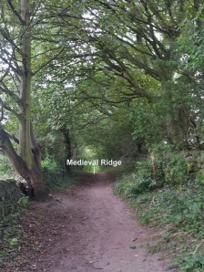 This is the same ridge going across Kelcliffe Lane.  The lane dates to the early 1700's.