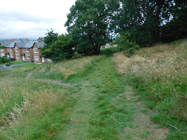 Past the butterfly area, where the estate path now comes up,