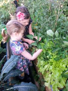 Children picking vegetables in the Station community plot